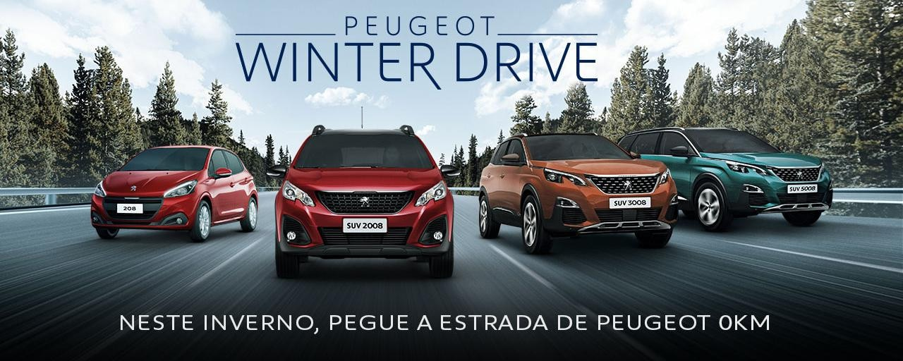 Peugeot_Winter_Drive