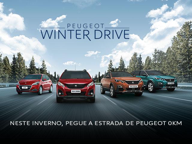 winter_drive